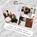 Curso de champú sólido, líquido y productos capilares