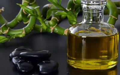 Los 5 mejores aceites vegetales para la piel seca